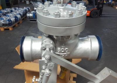 check_valves_05